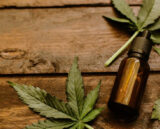 What To Look For When Searching High Quality CBD Oil